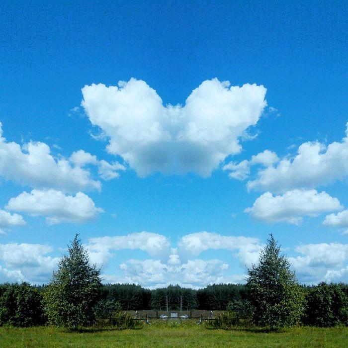 Vladimir Природа Nature Russian Nature Russia россия природа и красота природароссии пейзаж небо облака