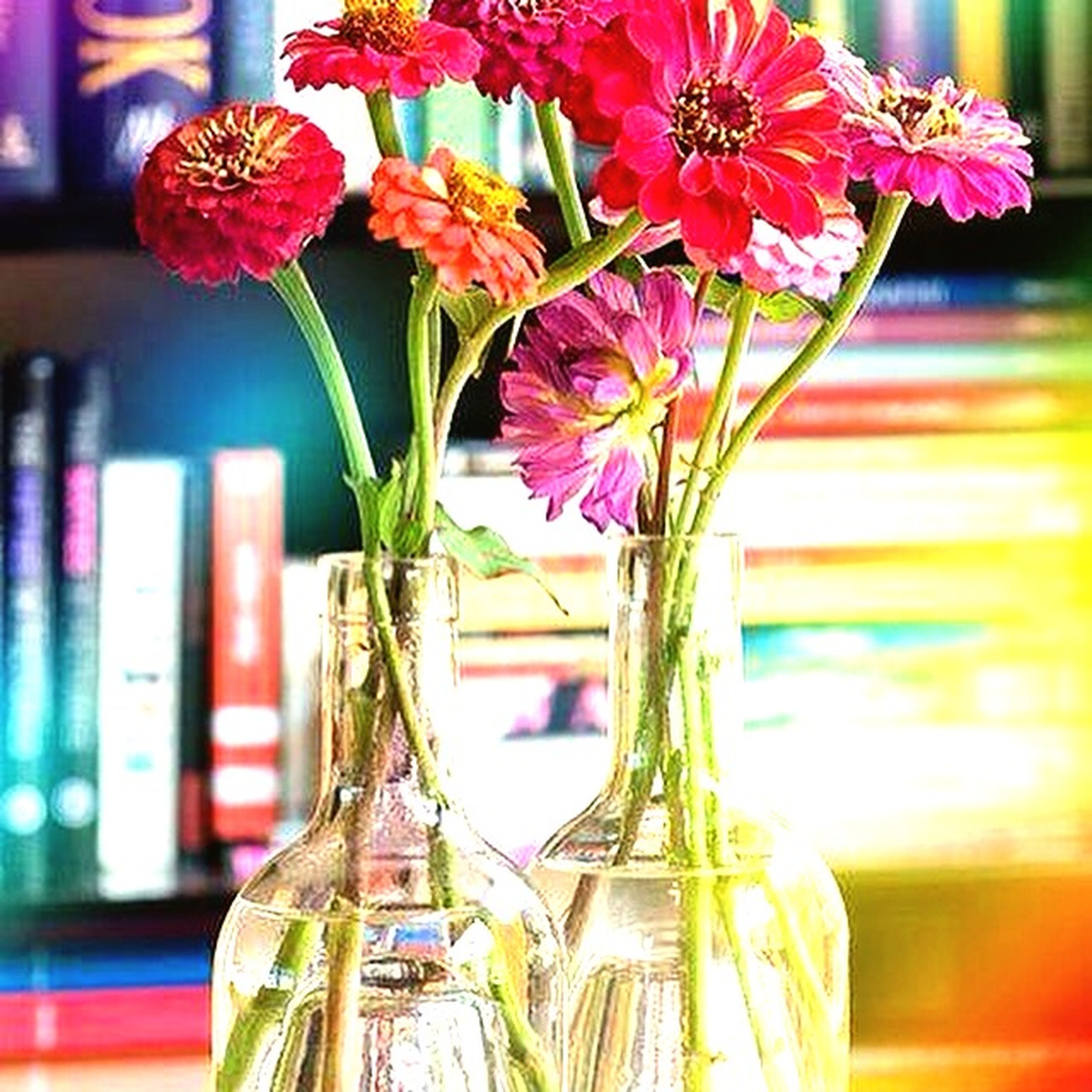 flower, fragility, focus on foreground, freshness, vase, petal, close-up, growth, potted plant, plant, decoration, pink color, built structure, stem, flower head, indoors, glass - material, nature, architecture, building exterior