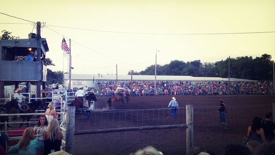 buckin' broncos, oh my! Rodeo Country Horses County Fair