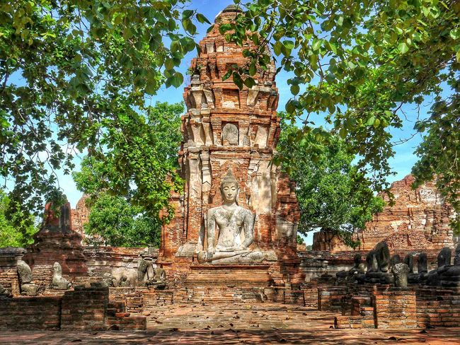 Thailand Travel Tree Leaf 🍂 Green Temple Architecture Temple In Thailand Brick Archaeological Sites Ancient Temple Ancient Old Vintage Light And Shadow Ayutthaya Peaceful Branch Pagoda Temple Building Architecture Ayutthaya Historic Park Tour Buddhism Religion Architecture Religion