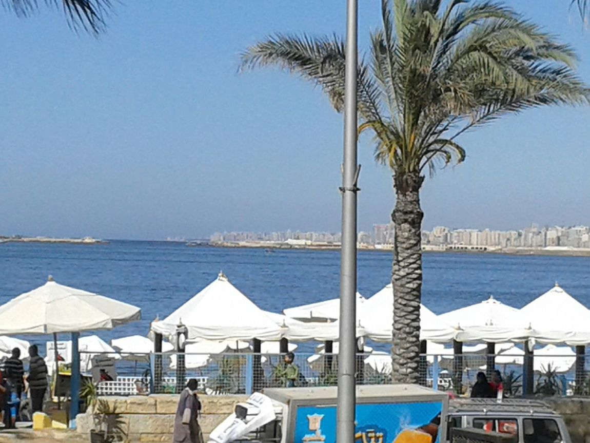 View from Qaddoura seafood restaurant Eating Lunch Delicious Seafood At The Corniche Alexandria A Place I Love The Place I'm Now Enjoying The Company Hello World ✌ Check It Out