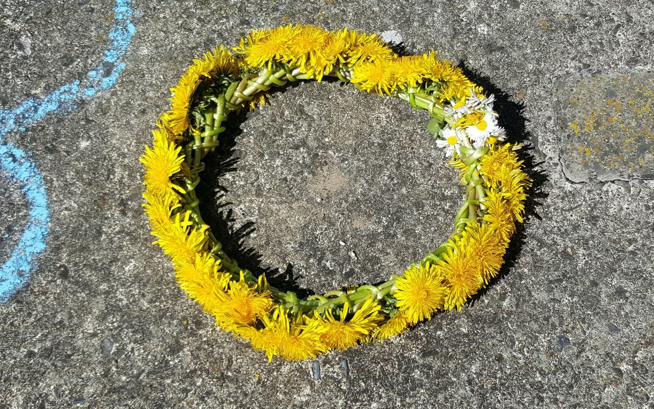 Yellow No People Outdoors Close-up Day Dandelion Dandelion Flowers Daisy Flower Head Daisyflower White Daisy 🌼 Wreath Of Flowers Summer Handmade By Me