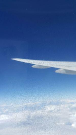 Vietnam Airline 베트남 하늘 집으로 가는 중