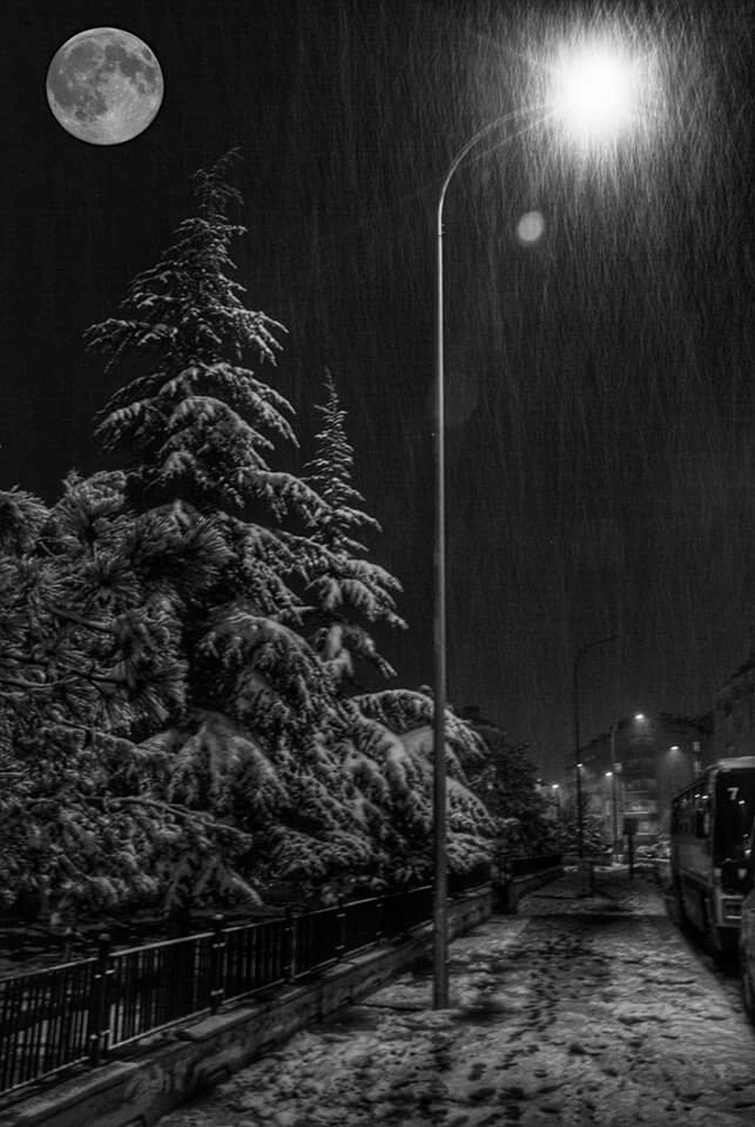 night, illuminated, street light, lighting equipment, the way forward, tree, street, transportation, road, light - natural phenomenon, sky, electric light, outdoors, electricity, no people, in a row, built structure, diminishing perspective, glowing, incidental people