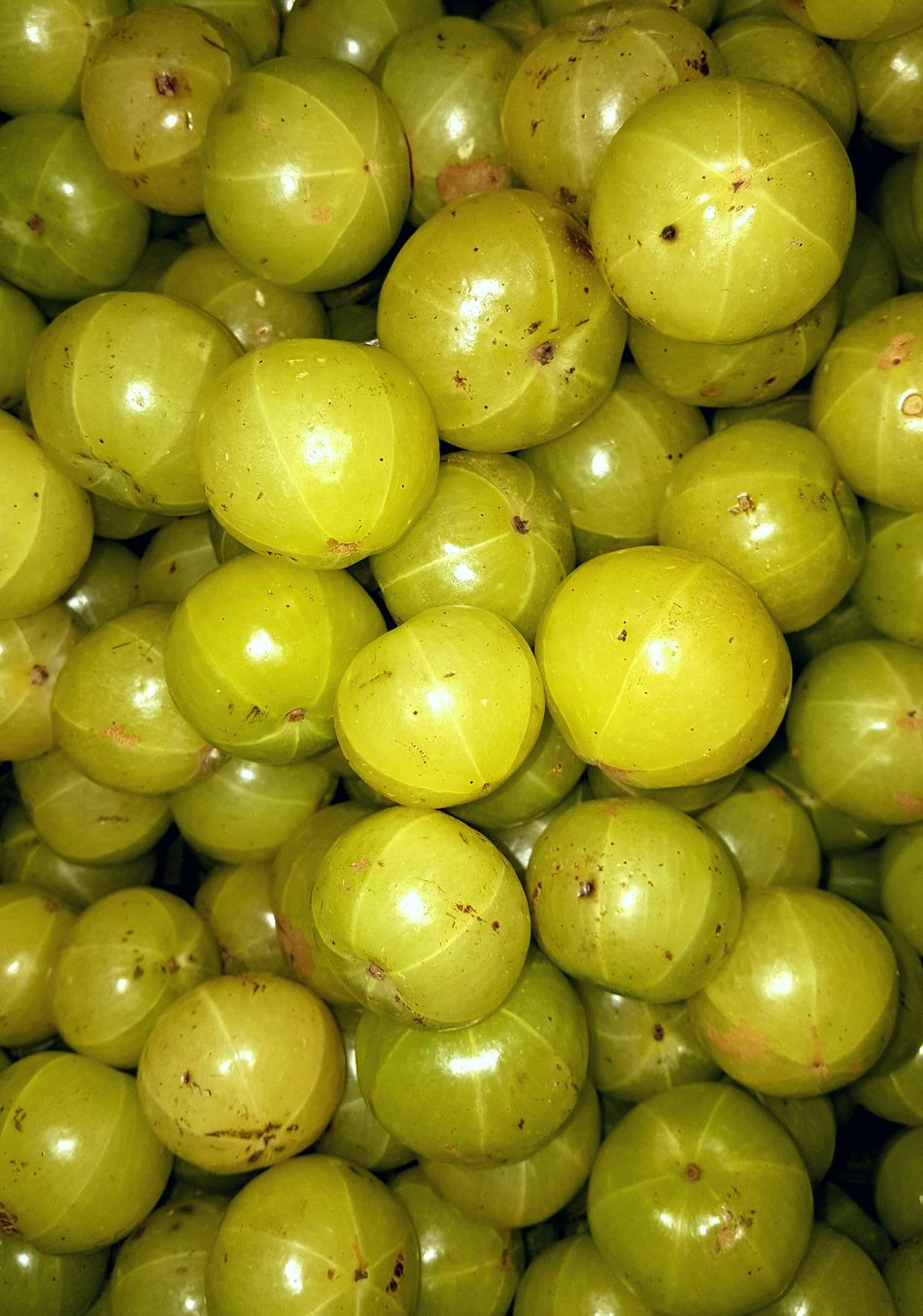 Gooseberries Gooseberries Gooseberry Freshness Yellow Healthy Eating Close-up Large Group Of Objects Hellow World Vegetables Eyeemphotography EyeEm4photogtaphy EyeEm Gallery Eyeem Market EyeEm Market Berries Green Berries Bigger Size AMLA Medicinal Value Medicinal GooseberrySalad Fruit Berry Fruit Vitamin C