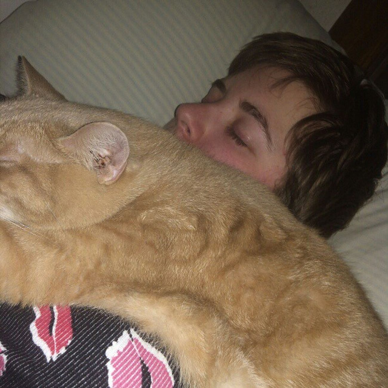 how i will be sleeping tonight... can't breathe. Meow Snugglebuddy Catlady