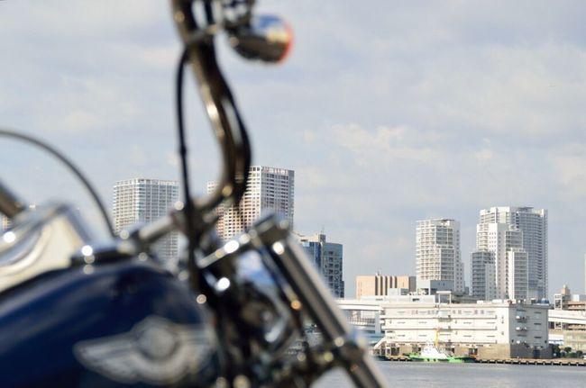Tokyo Bay Harley Davidson 豊海水産埠頭
