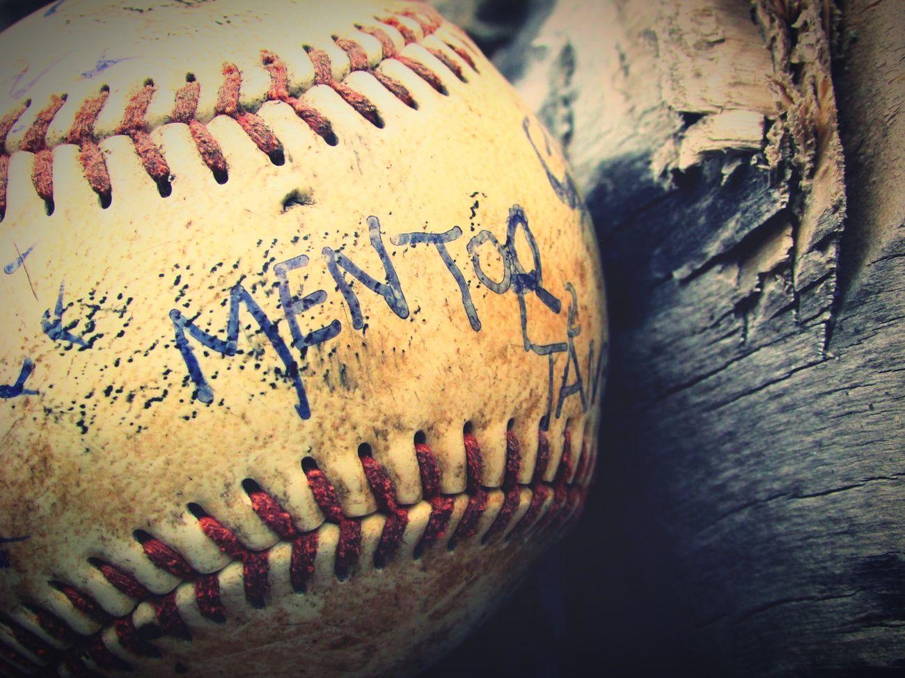 Baseball - Sport Baseball - Ball Mentor Outside Adventure Outdoors Hiking Serendipity ➰ Hikingadventures Summer Woods Day No People Baseball Canada
