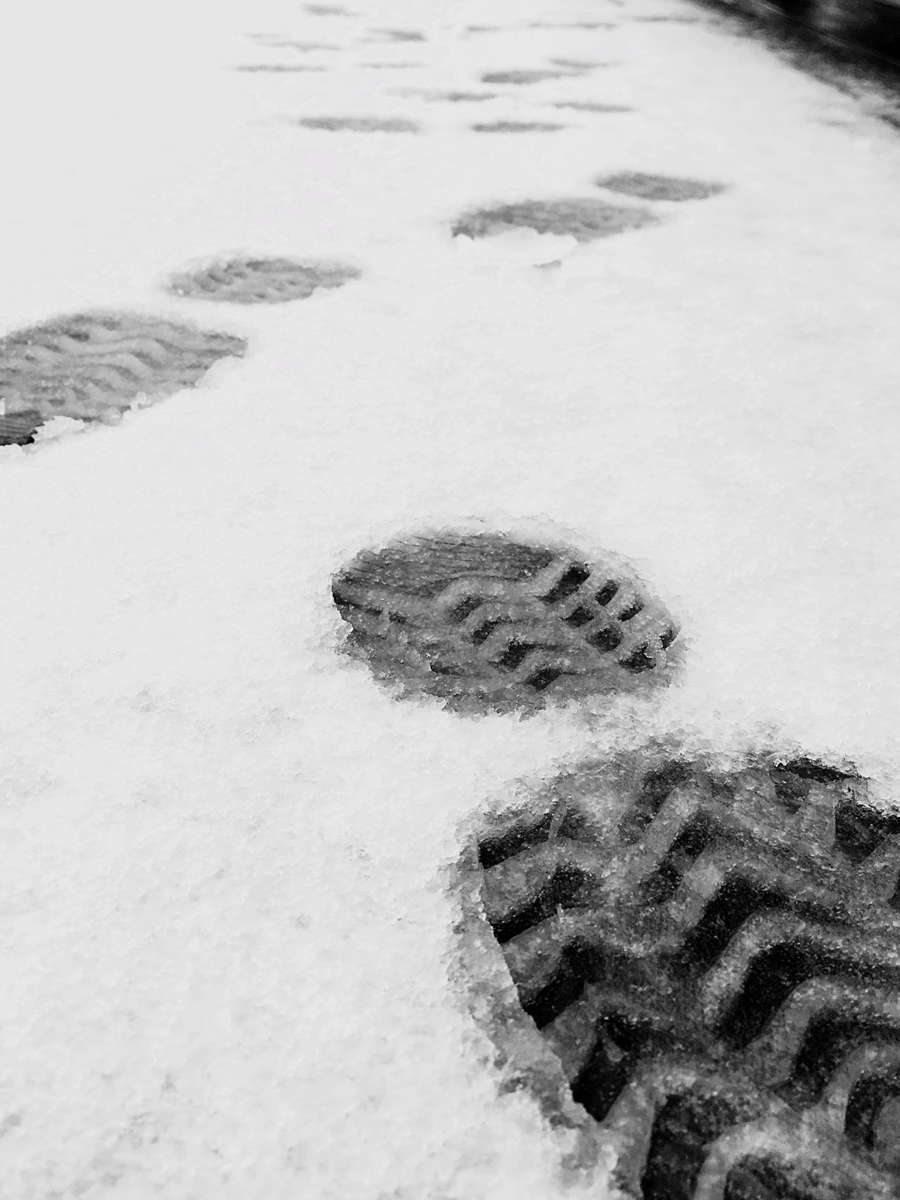 Winter Snow Cold Temperature Nature Weather Day No People Outdoors Beauty In Nature Paw Print FootPrint