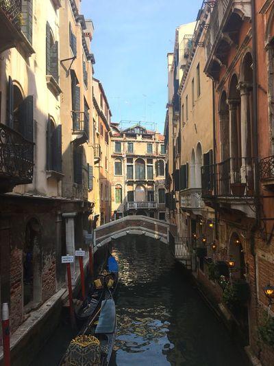 Venice, Italy City River Bridge Water Boat Sunshine The Architect - 2017 EyeEm Awards