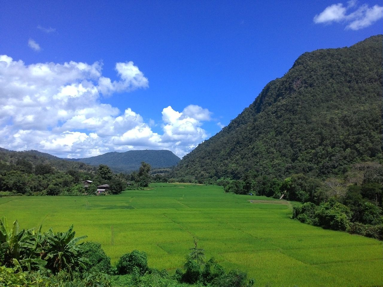 Beauty In Nature Chiang Dao Chiang Mai | Thailand Green Color Miles Away Mountain Rice Paddy Scenics Sky Tranquil Scene