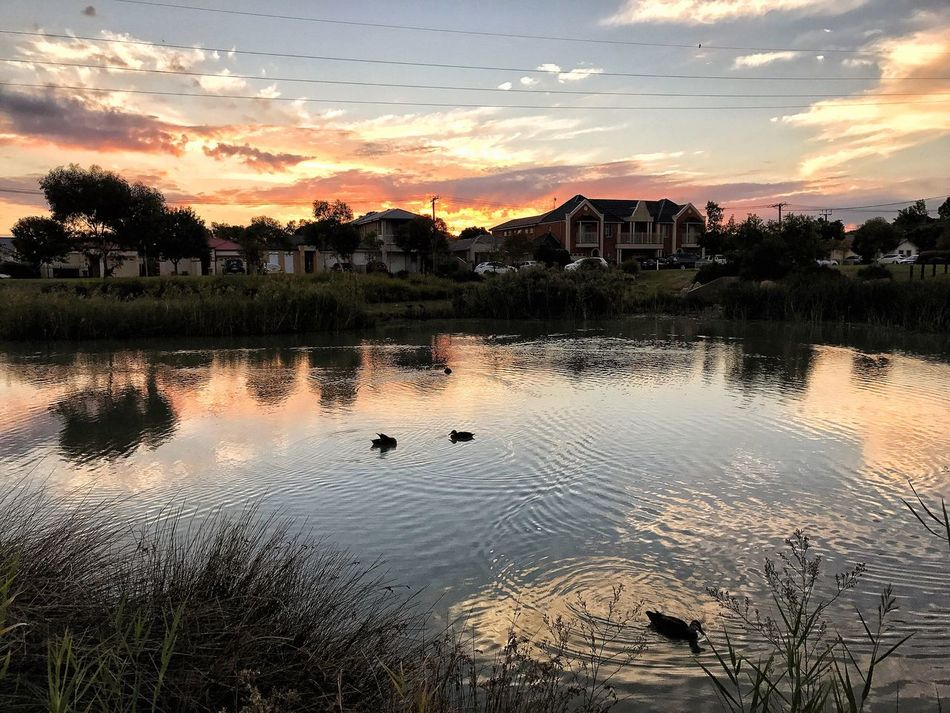 Landscape Tranquil Scene Low Angle View Eye4photography  Cloud - Sky Water Sunset Reflection Nature Outdoors Beauty In Nature EyeEm Nature Lover Taking Photos Enjoying Life Enjoying The Sun Capture The Moment