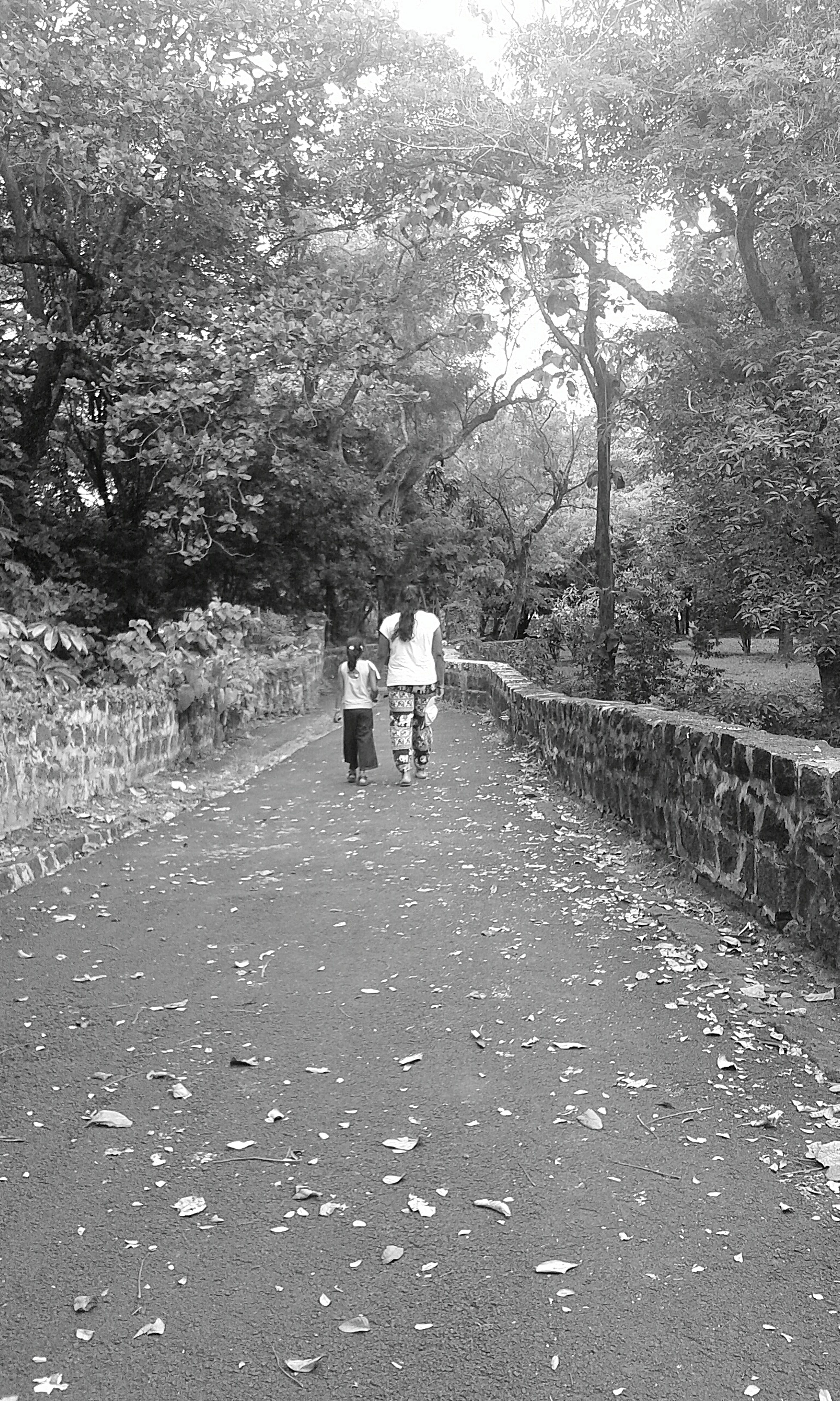 My Best Photo 2015 Pathway To Paradise Peaceful Moments Only Love And Joy Nature In Black & White Enjoying With My Cousin