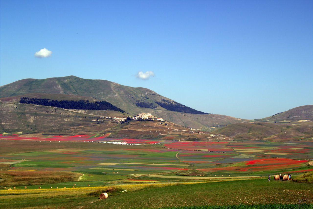 Voglioricordarticosi Castelluccio Di Norcia fiorituraluglio2016 Colori Nature Beauty In Nature Agriculture Sky Mountain Scenics Beauty In Nature Tranquil Scene
