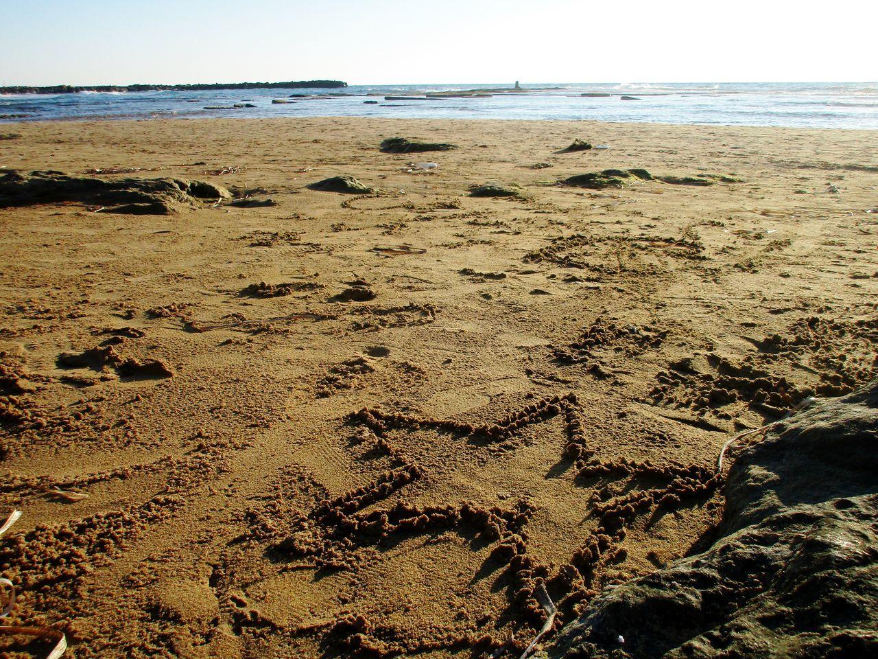 Beach Sand Sand Star Sea Sea Sand Showcase March Showcase: March Star Winter Showcase April 43 Golden Moments