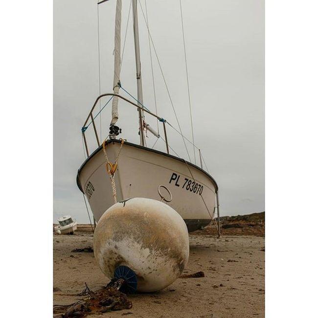 Low tide in L' Armor Pleubian Tide Tides Rocks Rock Water Coast Shell Ebbe Fels Gezeiten Pleubian Larmorpleubian Sillondetalbert Brittany Bretagne France Segelschiff Ship
