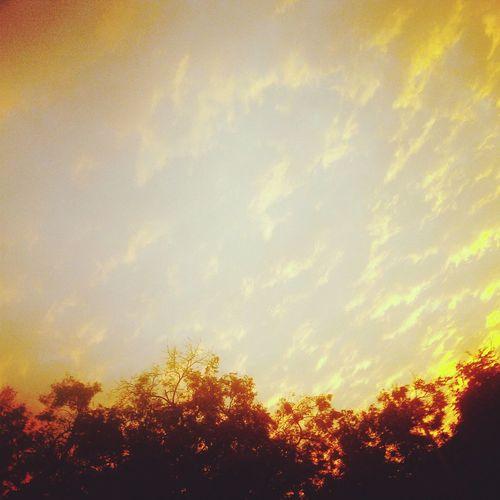 WeatherPro: Your Perfect Weather Shot Nowinter HELLODECEMBER! ♥ Besttimeoftheyear begood december!!?