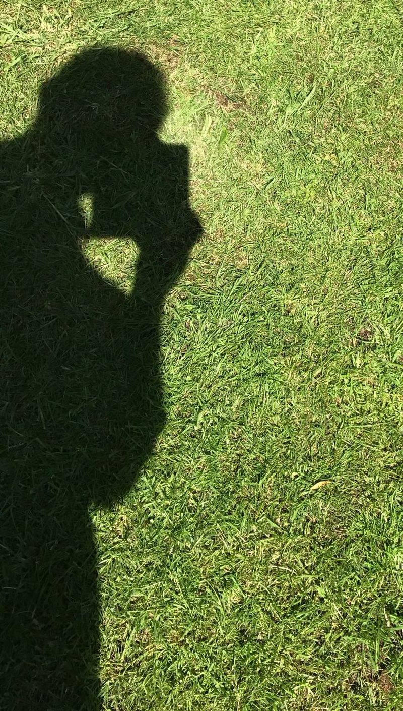 Shadow iPhone 844576
