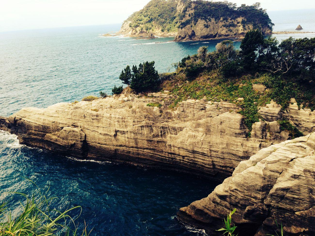 Trip Ocean View