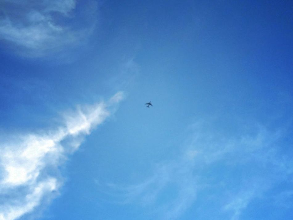 On The Way EyeEm Best Shots Azure Sky Bright Sunshiny Day On A Wing And A Prayer Cruising Flying High Jumbo