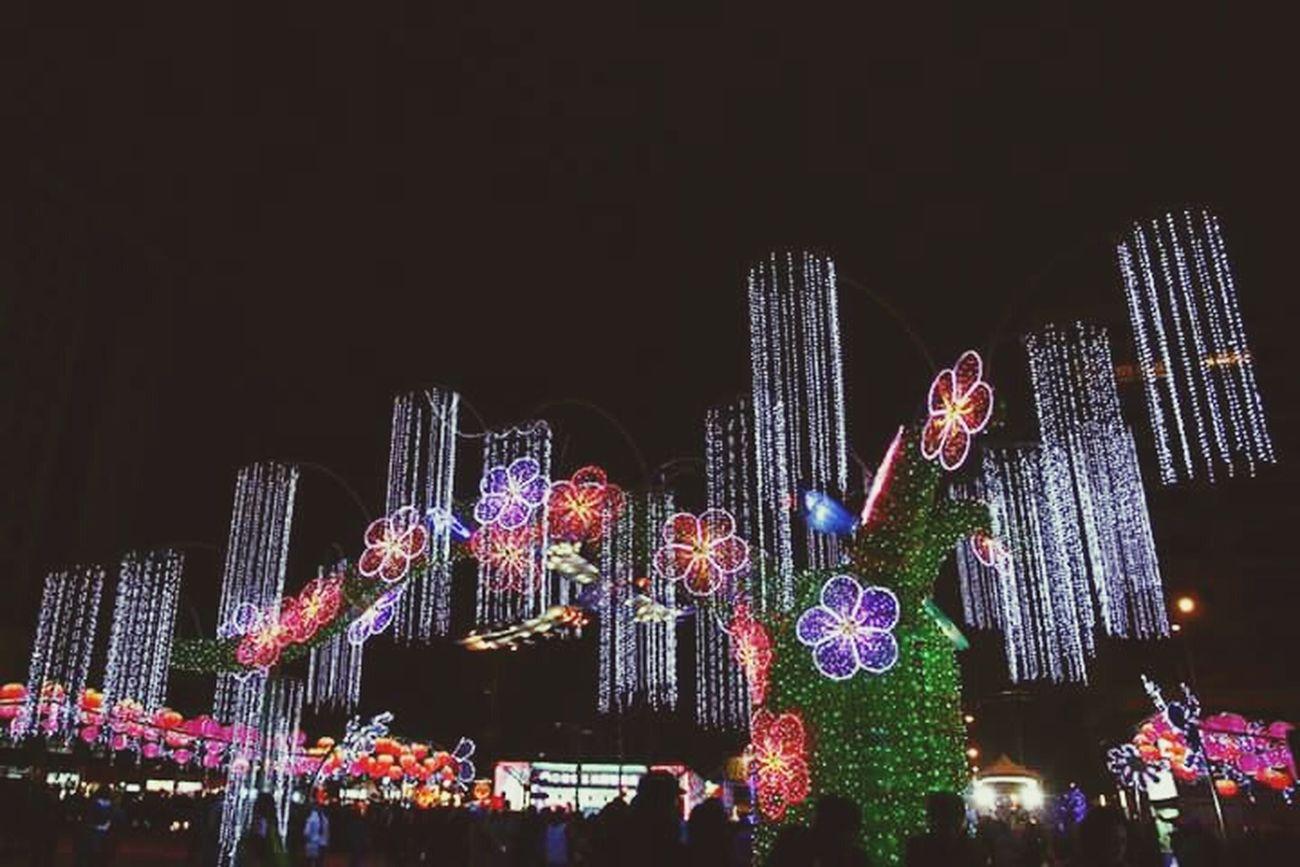 Taiwan Lantern Festival Good Evening Frnds Relaxing Hanging Out Hello World PhonePhotography Light And Shadow Beautiful Light Flower Ligth Green Color Light Reflection EyeEm Best Shots Eye4photography  Eyem Best Edits