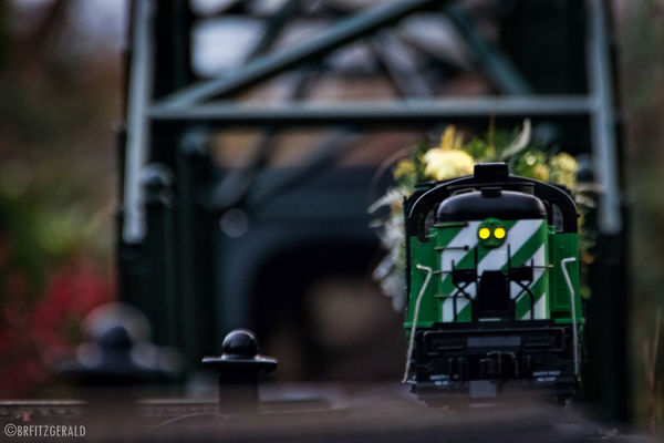 The train approacheth. Check This Out Train Model Trains LongwoodGardens Longwood Gardens Pennsylvania Philadelphia Showcase: December EyeEm Best Shots