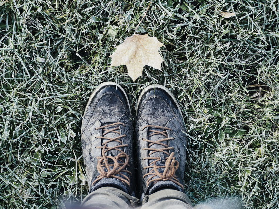 Personal Perspective Human Leg Standing Shoe One Person High Angle View Outdoors Esprit Leaves Autumn Frosty Mornings Morning Olympuspenepl7 OlympusPEN