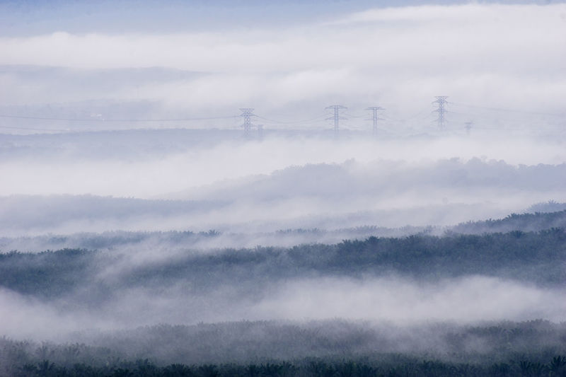Distance Fog Mist Morning Distance Asdgraphy Power Line  Power Grid Forest Broga Hills Flora Jungle Trees Malaysia No People Environment Mountain Nature Landscape Scenics Outdoors Break The Mold