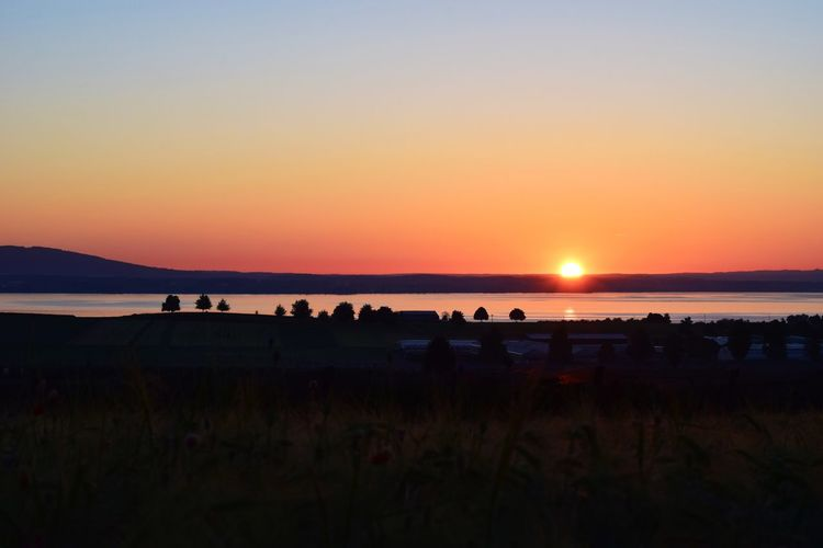 Sunset Nature Silhouette Beauty In Nature Scenics Tranquil Scene Sun Landscape Tranquility Sky Field Outdoors Sea Clear Sky Large Group Of People Vacations Grass Water People Bodensee Sonnenaufgang Bodenseebilder Bodenseeufer