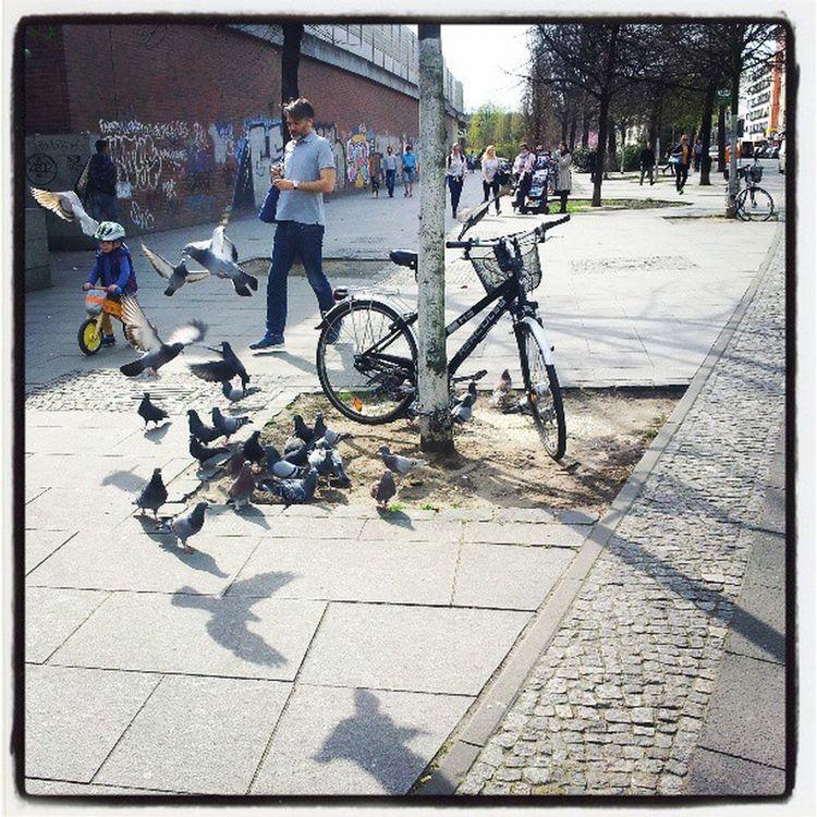 Life is a blessing. Birds Fathernson Cycle Lovencare Shopping Graffitiwall Lightnshadows Fly Freedom Dog Crowd Footwalk Berlin Treein thecity Smallnbig