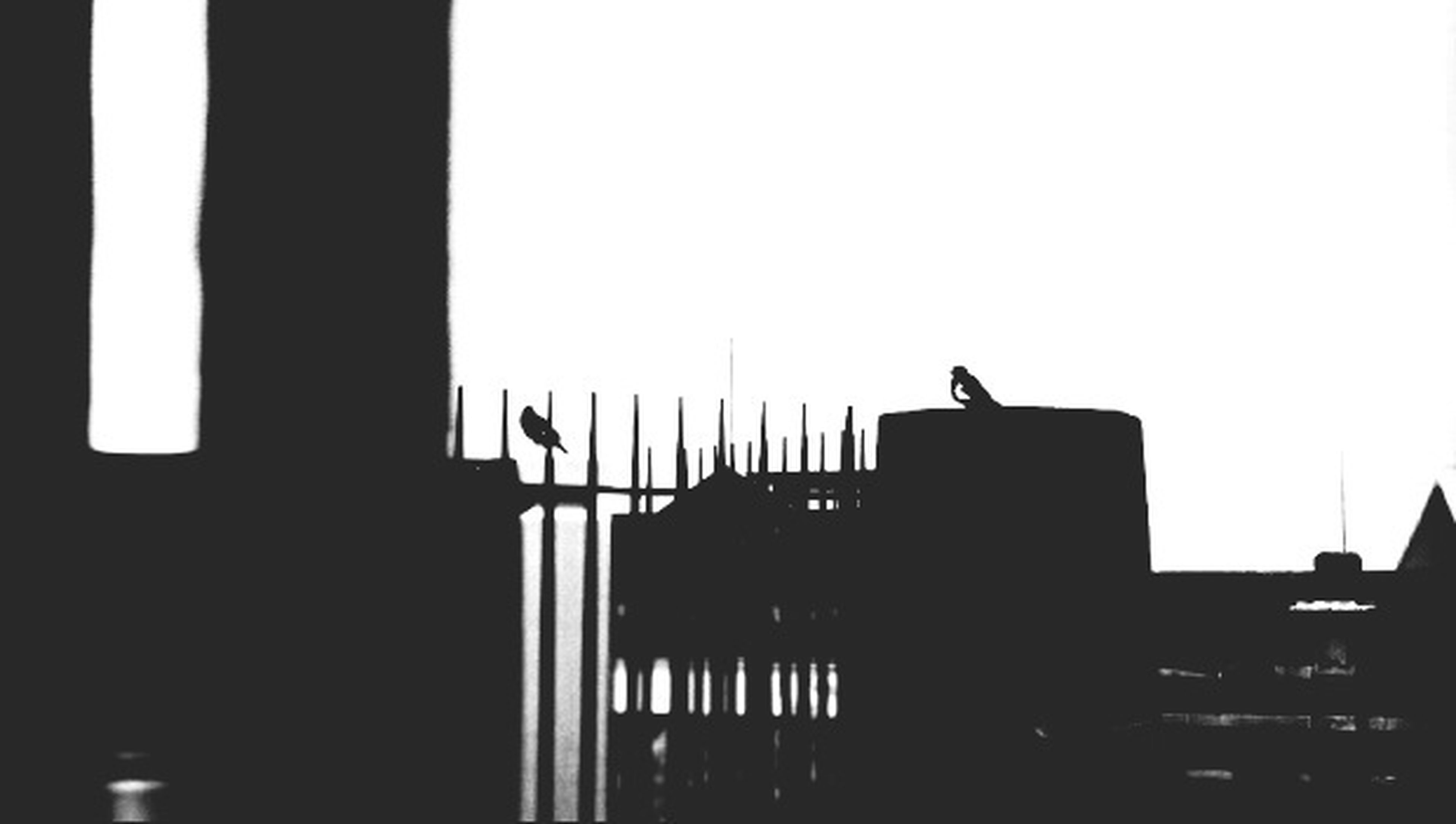 silhouette, architecture, built structure, building exterior, clear sky, copy space, low angle view, bird, outline, sunset, dusk, building, sky, city, outdoors, animal themes, dark, high section, street light, residential building