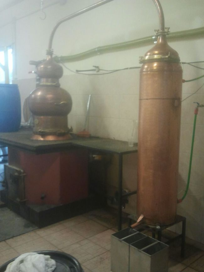 there we make alcohol!! Ouzo How To Make Alcohol Greek