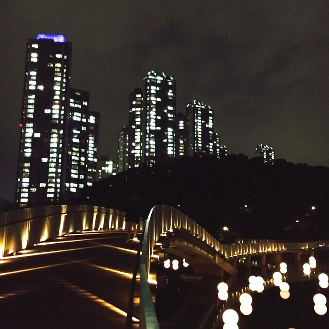 호수공원의 밤. Night 호수공원 밤 Daily IPhone
