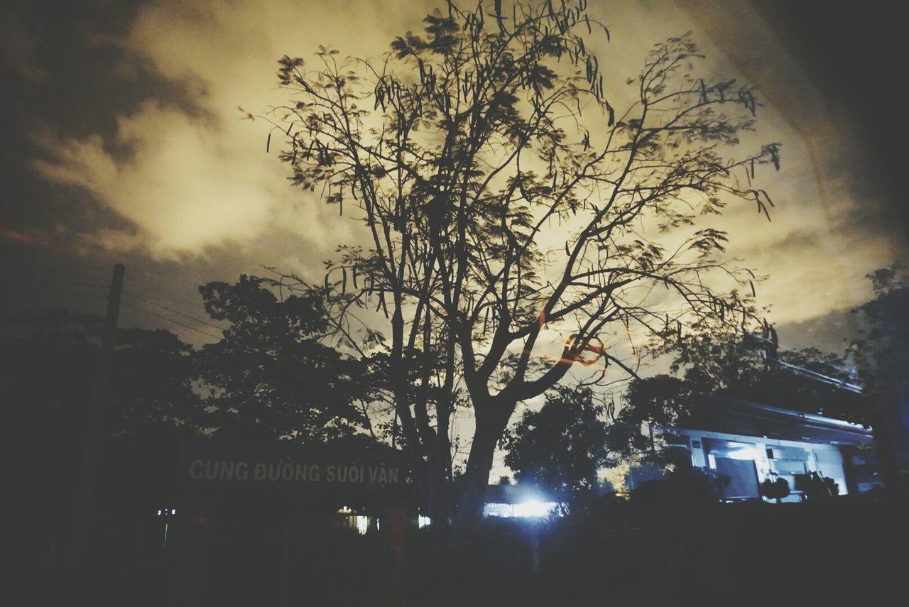 On the way Tree Sky Outdoors Illuminated Corner Journey Vintage Alpha