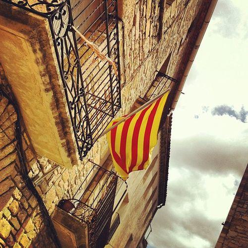 Ajutaments com cal... Catalunya Banderes Ajuntaments