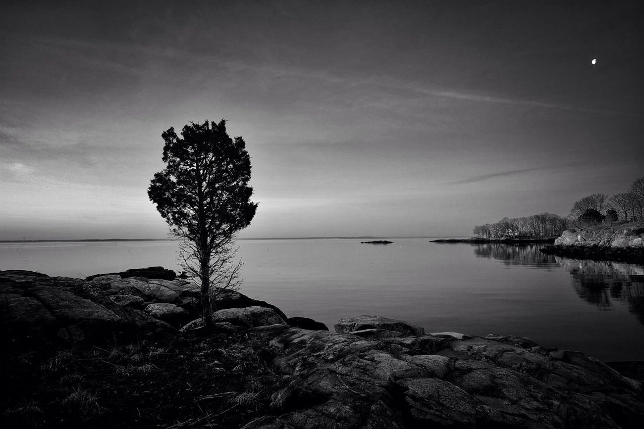 Peaceful Tidings Nature Blackandwhite Landscape Shootermag