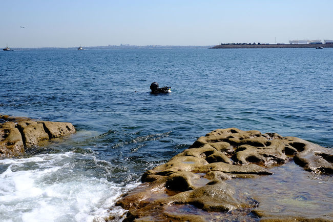 Beauty In Nature Non-urban Scene Outdoors Rock - Object Rock Formation Rocks And Water Scubadiving Sea Shore Tranquil Scene Water_collection Wave