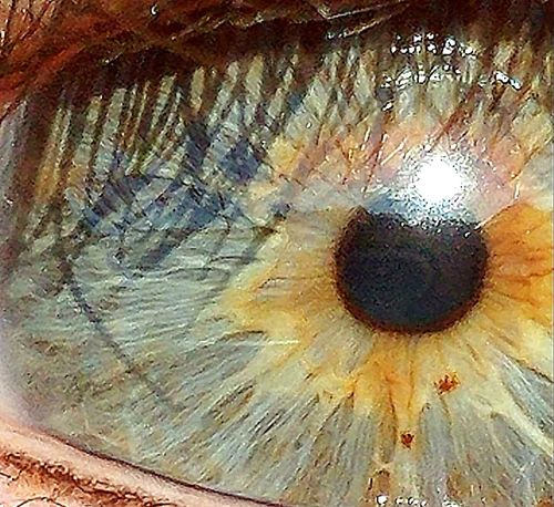 Seat Of The Soul Eyes My Eyes ❤ Close-up