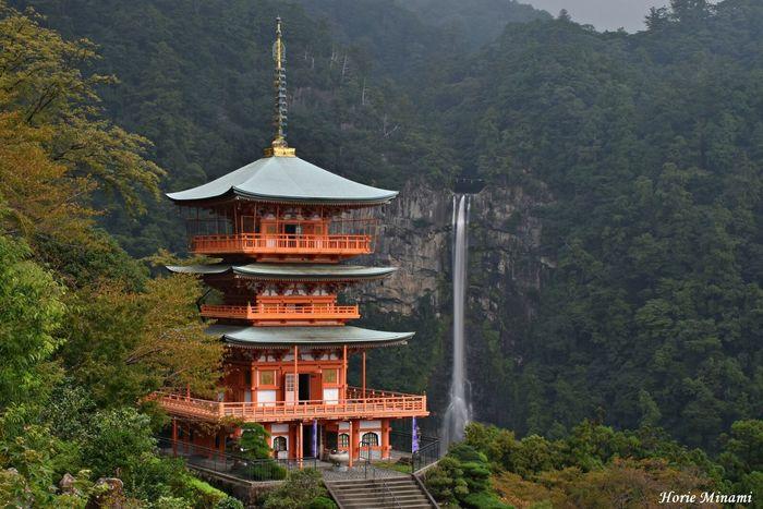 EyeEmNewHere EyeEm Best Shots EyeEm Team The Week On EyeEm Landscape Japan Waterfall 那智勝浦 那智の滝 和歌山県