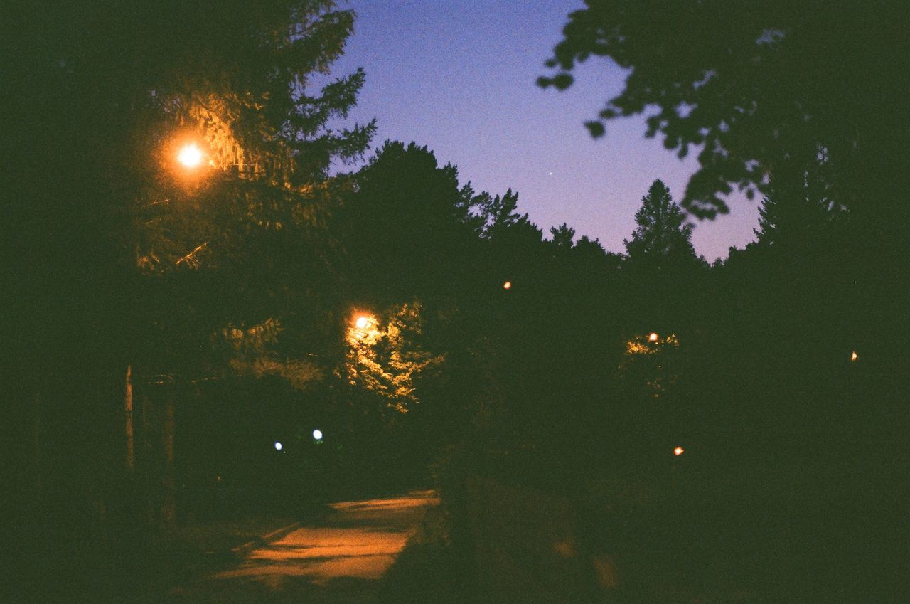 night, illuminated, moon, tree, no people, nature, outdoors, beauty in nature, sky