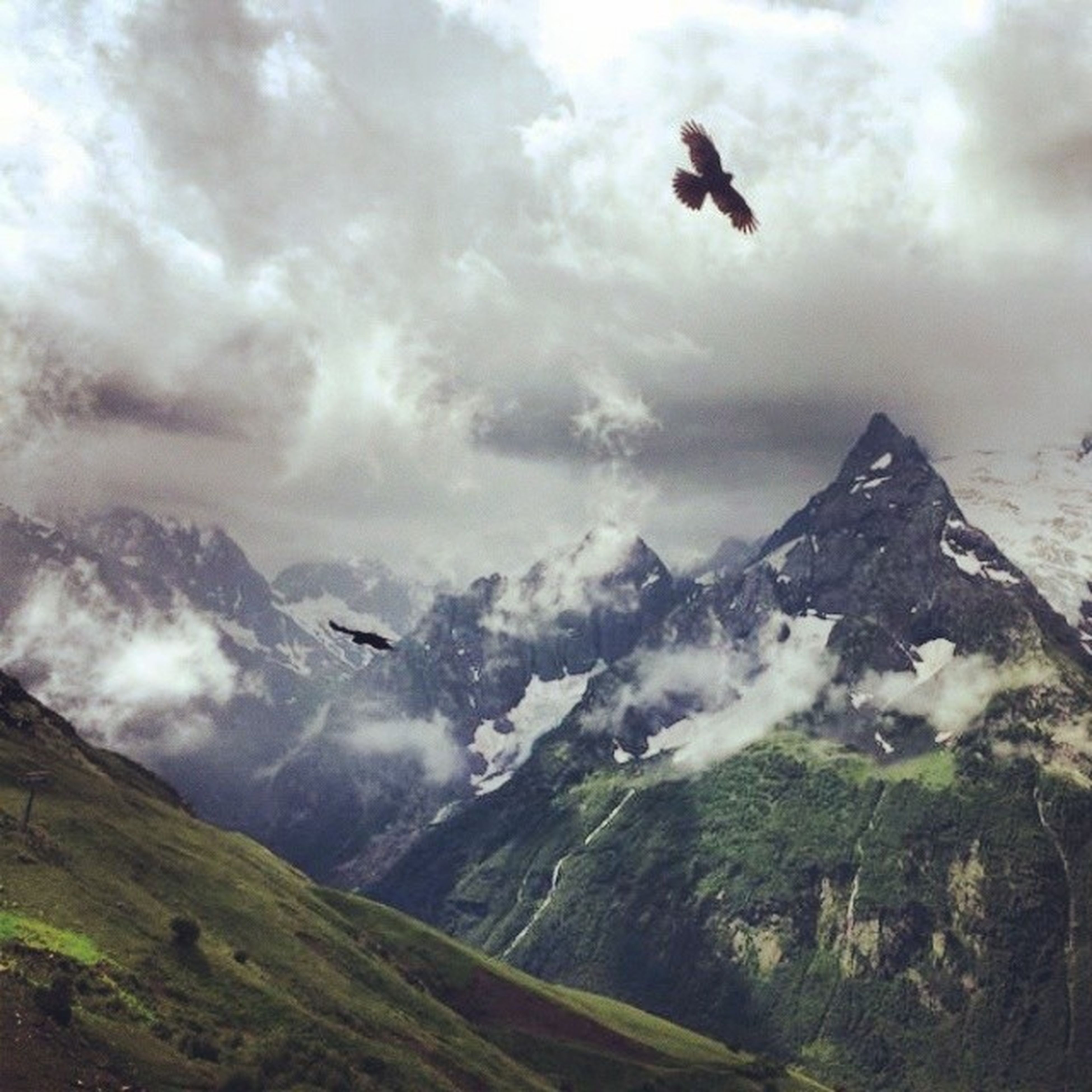 mountain, flying, sky, cloud - sky, mountain range, animal themes, scenics, landscape, bird, cloudy, mid-air, tranquil scene, nature, beauty in nature, tranquility, weather, animals in the wild, wildlife, cloud, one animal