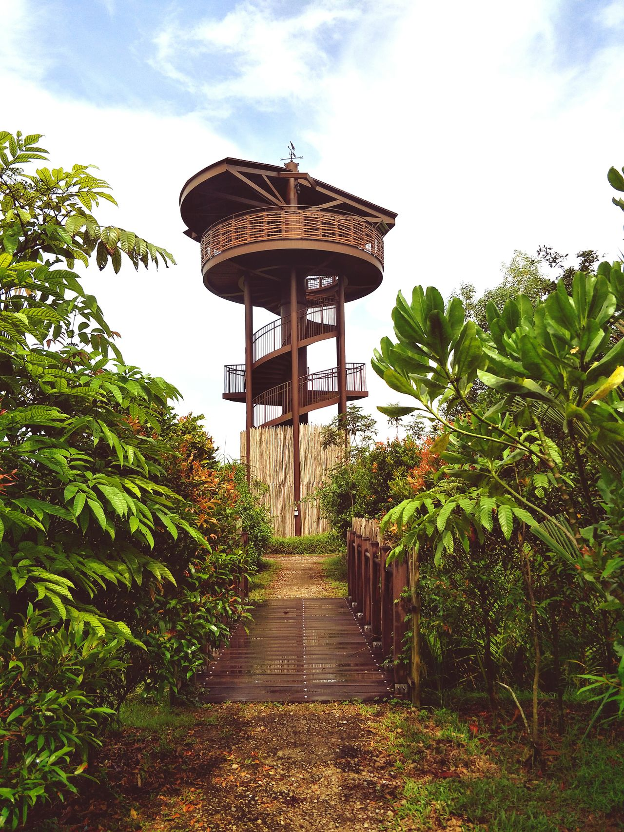 Cloud - Sky Tree Outdoors Architecture Nature Background Tower Viewpoint Kranji Marshes Hiking Bird Watching