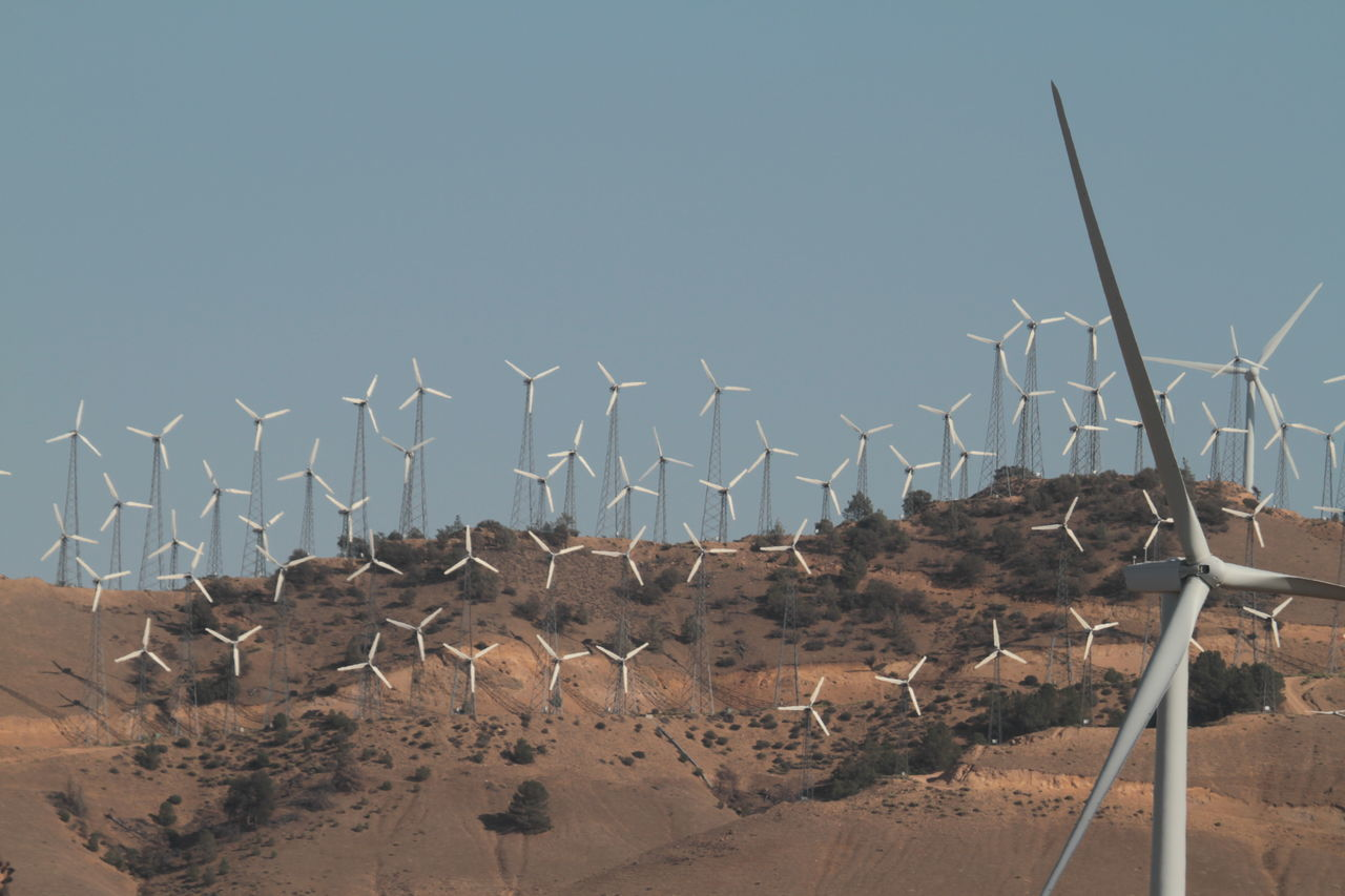 alternative energy, environmental conservation, nature, wind turbine, renewable energy, fuel and power generation, outdoors, no people, day, clear sky, wind power, windmill, sand, beauty in nature, desert, arid climate, animal themes, industrial windmill, sky, mammal