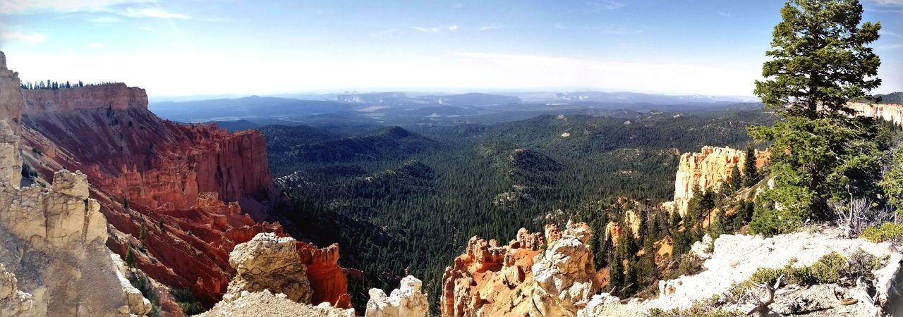 Mountain Pinaceae Pine Tree Tree Scenics Forest Outdoors Nature Landscape Wilderness No People Travel Destinations Mountain Range Sky Beauty In Nature Day Bryce Canyon Bryce Canyon National Park