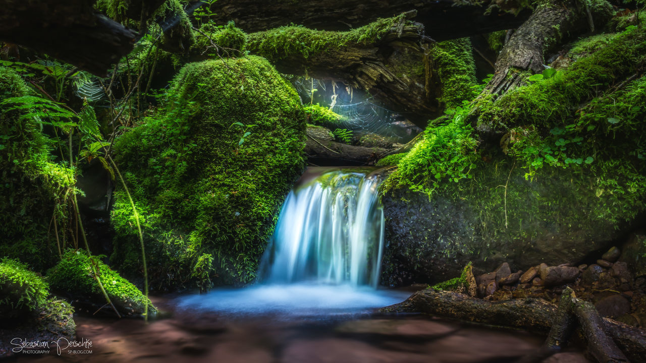 The Fairy Tale Forest. | #SPBLOG Beauty In Nature Blurred Motion Canonboyz Canonm5 Fairytale  Flowing Water Forest Green Color Leaf Long Exposure Motion Nature Odenwald  Outdoors River Rock - Object SPBLOG Water Waterfall Zwingenberg The Great Outdoors - 2017 EyeEm Awards