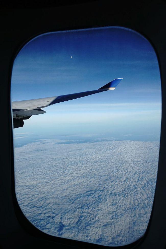 Fly Me To The Moon Blue Moon Flight The Week Of Eyeem On The Way The Week On EyeEm Hello World