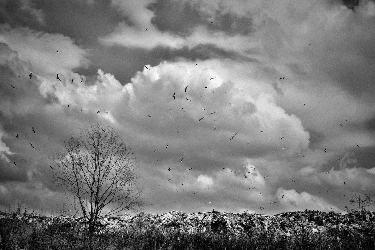 A place where anything ends.. Wastedump Dump Photography Blackandwhite Nikon D7100 Ostrava Hrusov Stink