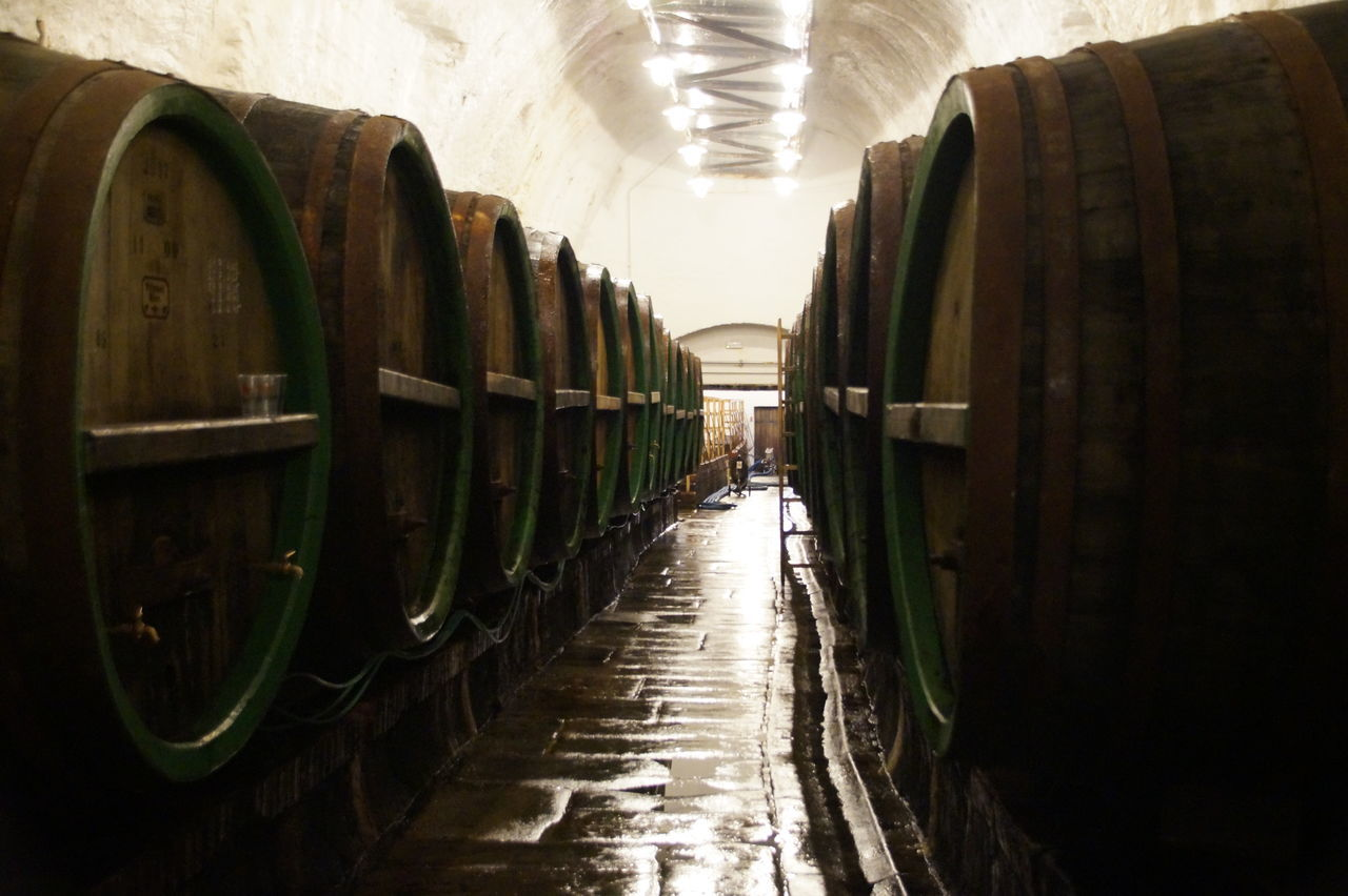 "It is more than important to ""feel"" the history, even when it brings you to a sad place like this. Agriculture Beer Brewery Cellar Day Historical Building Historical Monuments In A Row Indoors  No People Prague Warehouse Wine Wine Cask Wine Cellar Winemaking Winery"
