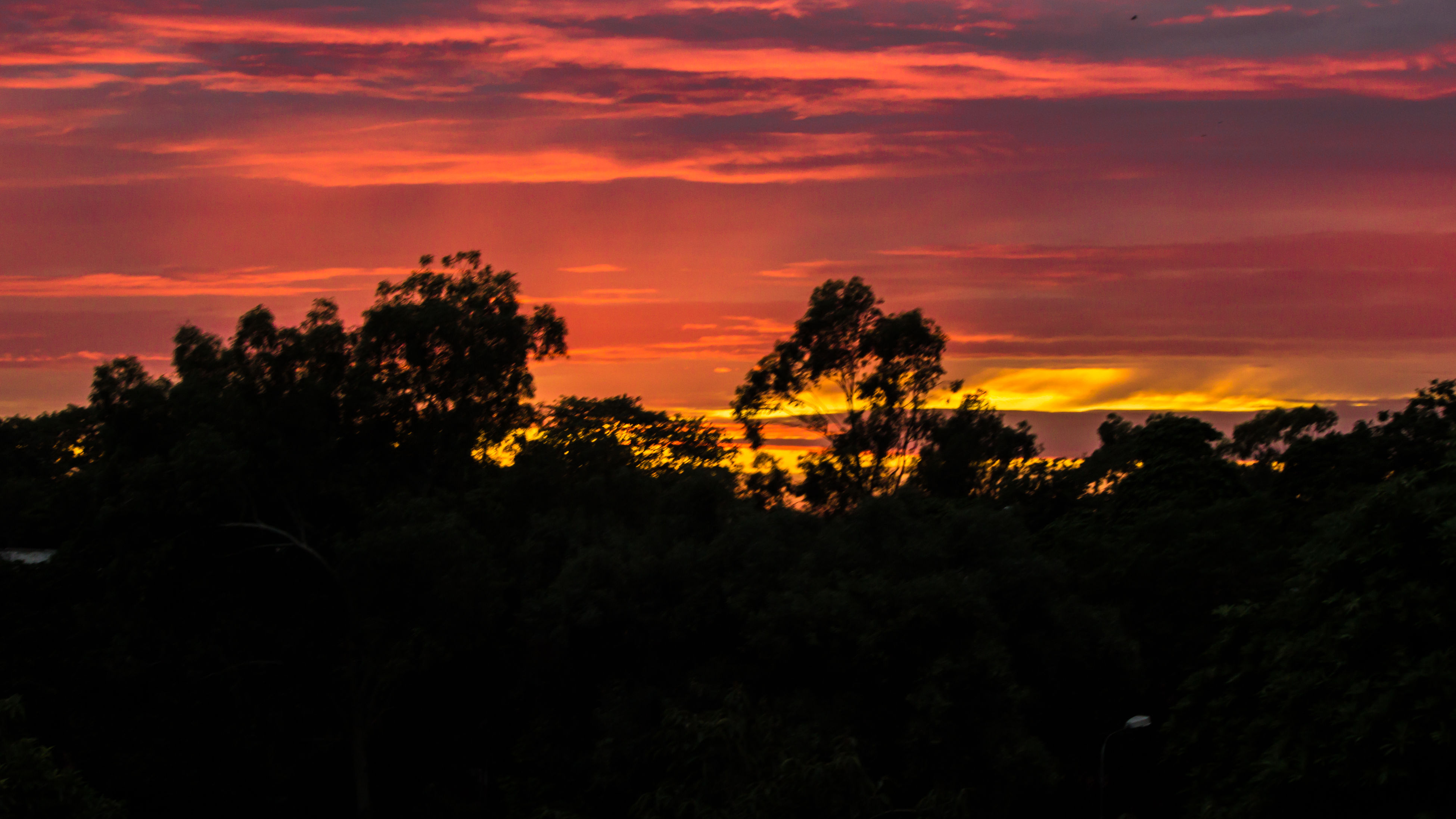 sunset, silhouette, tree, orange color, sky, beauty in nature, scenics, tranquil scene, tranquility, cloud - sky, nature, idyllic, growth, dramatic sky, landscape, cloud, outdoors, no people, cloudy, non-urban scene