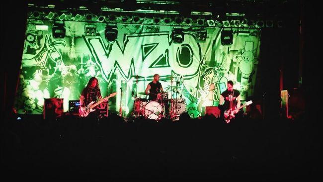 Wizo Great Performance Punk Seegurke